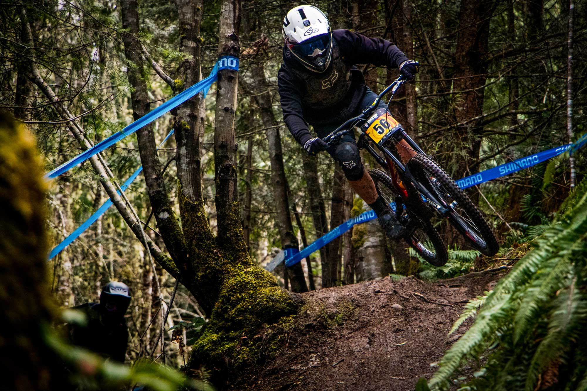 Rooted MTB