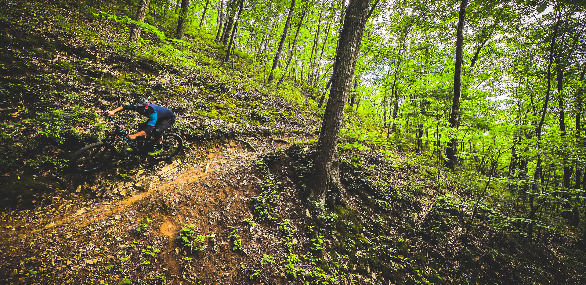 Maxxis Intersections: Roanoke, Virginia