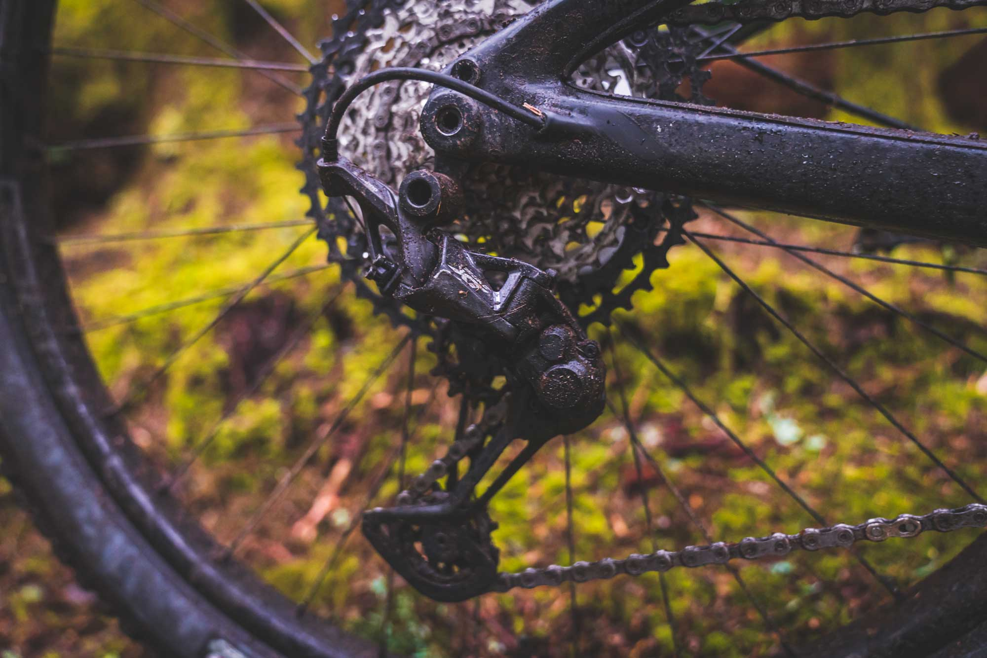 Shimano Launches 12 speed XT and SLX  First Ride Review and Info