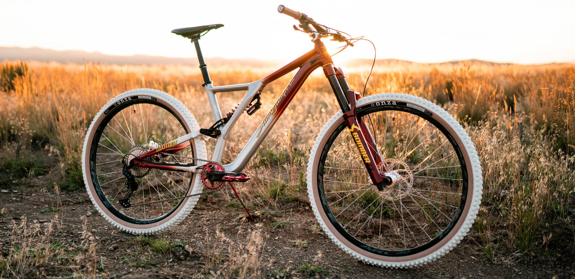 Giveaway V: Shreddy McFly - Custom Specialized Stumpjumper