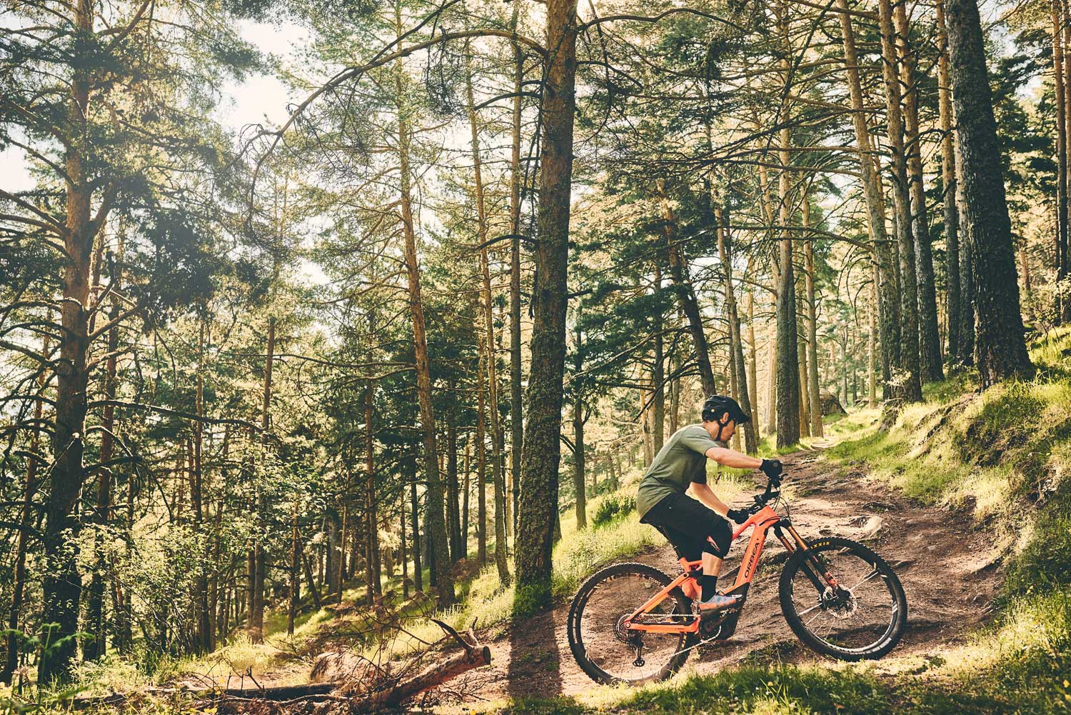 Orbea Releases The New Wild Fs The Loam Wolf