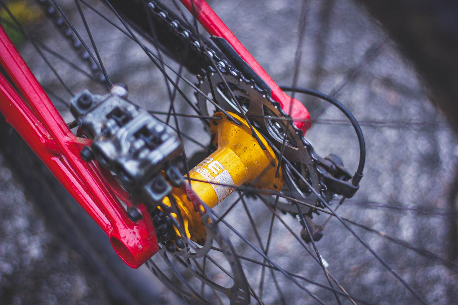 Starling Cycles Staer - High Jack Pivot Prototype