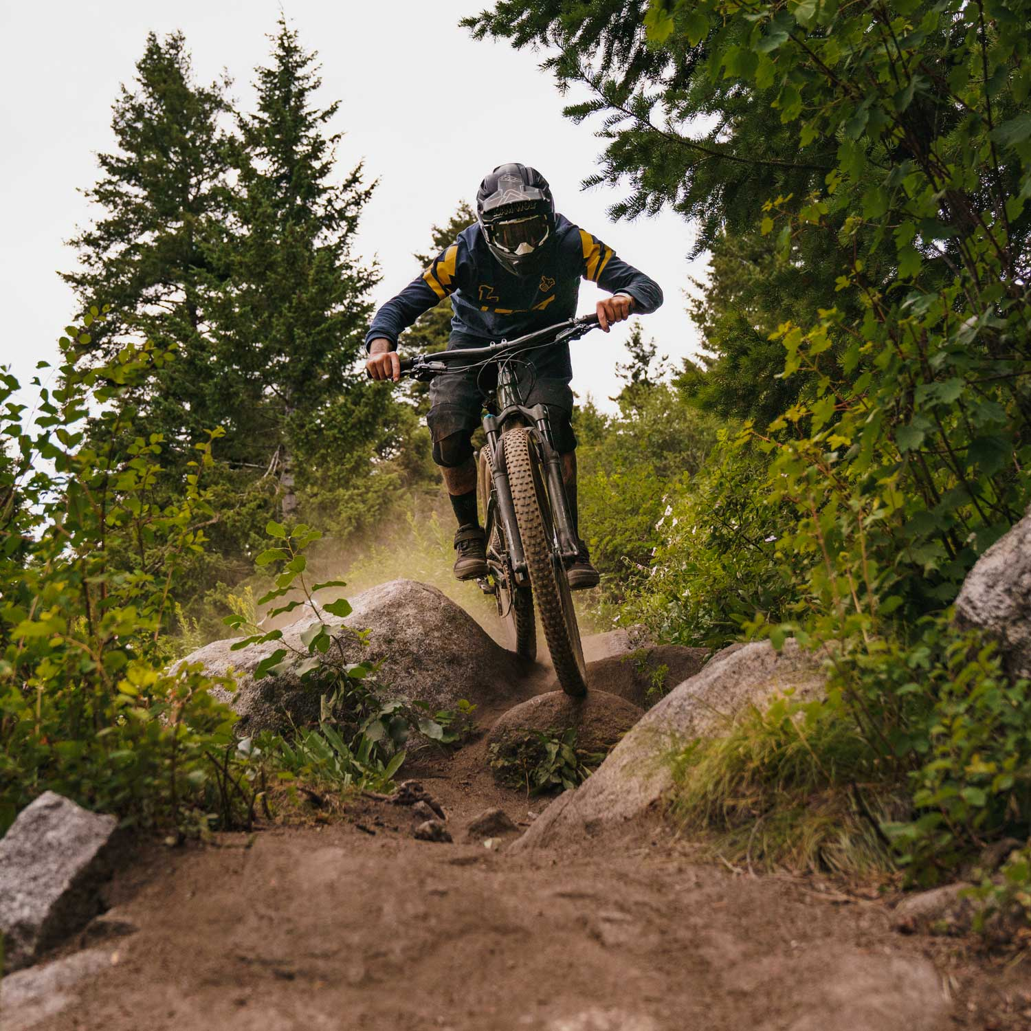 North American Bike Park Review Tour - Bogus Basin Bike Park