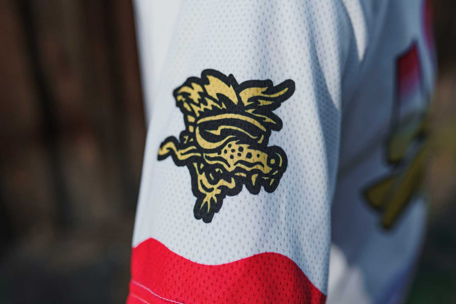The Loam Wolf x Voler Jersey Collab