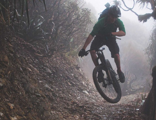 Video: Paparoa Track: Trails of Old