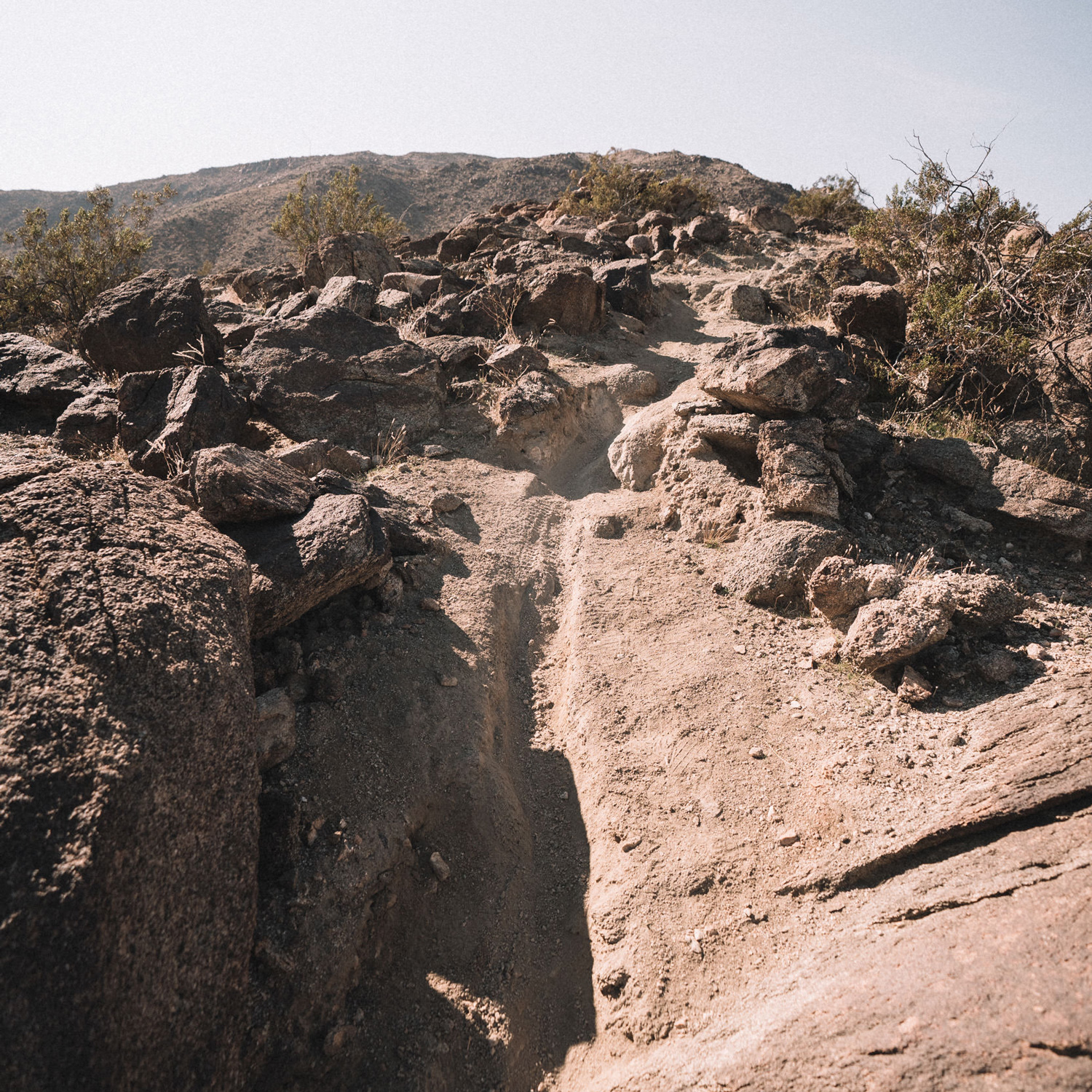 2020 eMTB Roundup: The Setting - Palm Springs