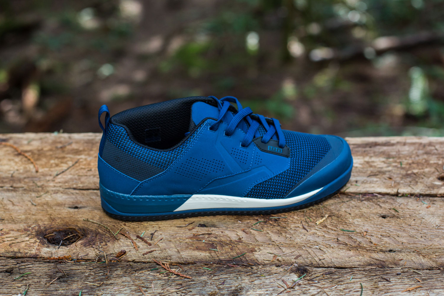 ION Scrub Amp Shoe Review