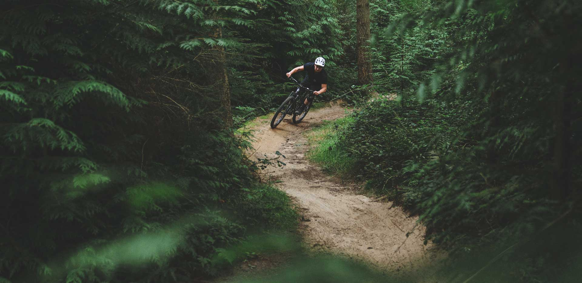 Interview: Tom Bugler of Morph Cycles