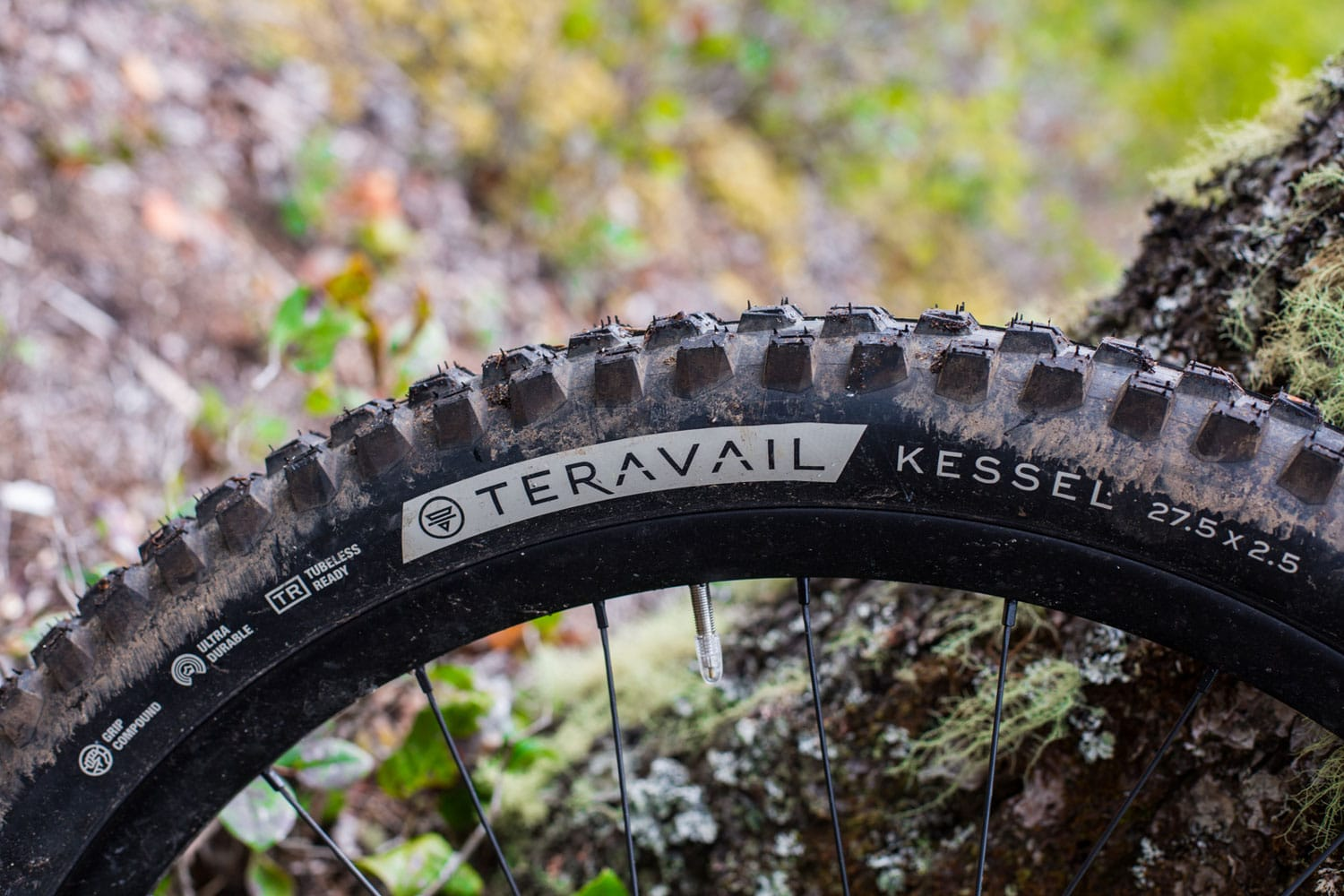 Teravail Kessel Tire Review