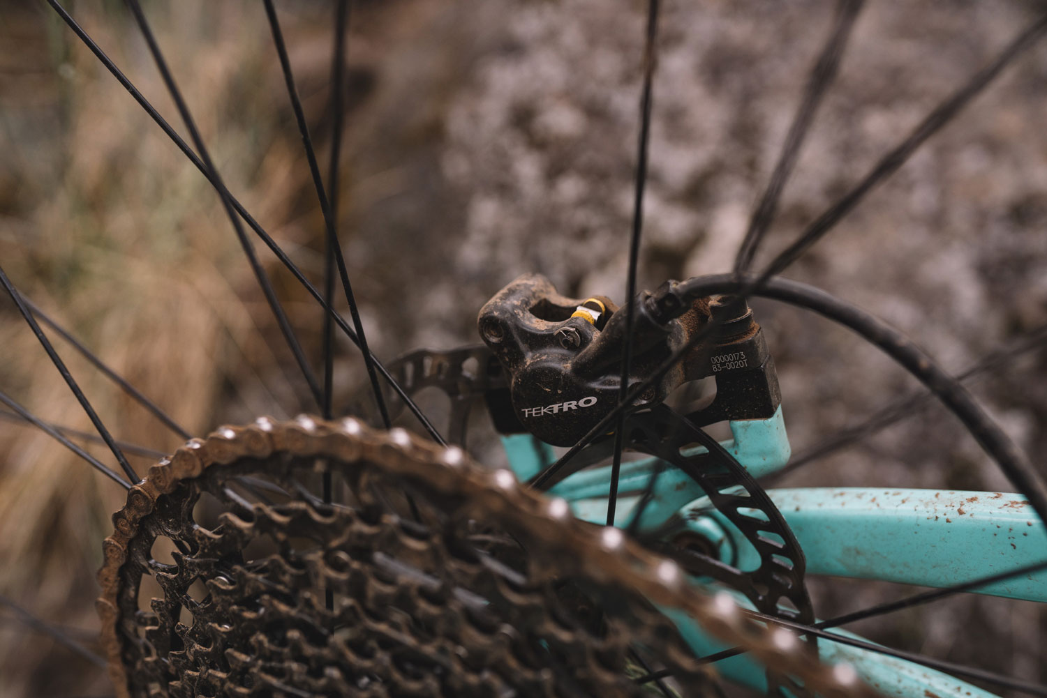 Polygon Siskiu T7 Review rear spokes and gears