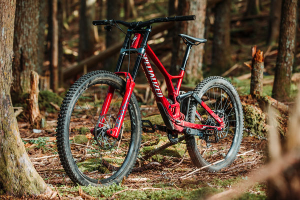 Review: 2021 Specialized Demo Race