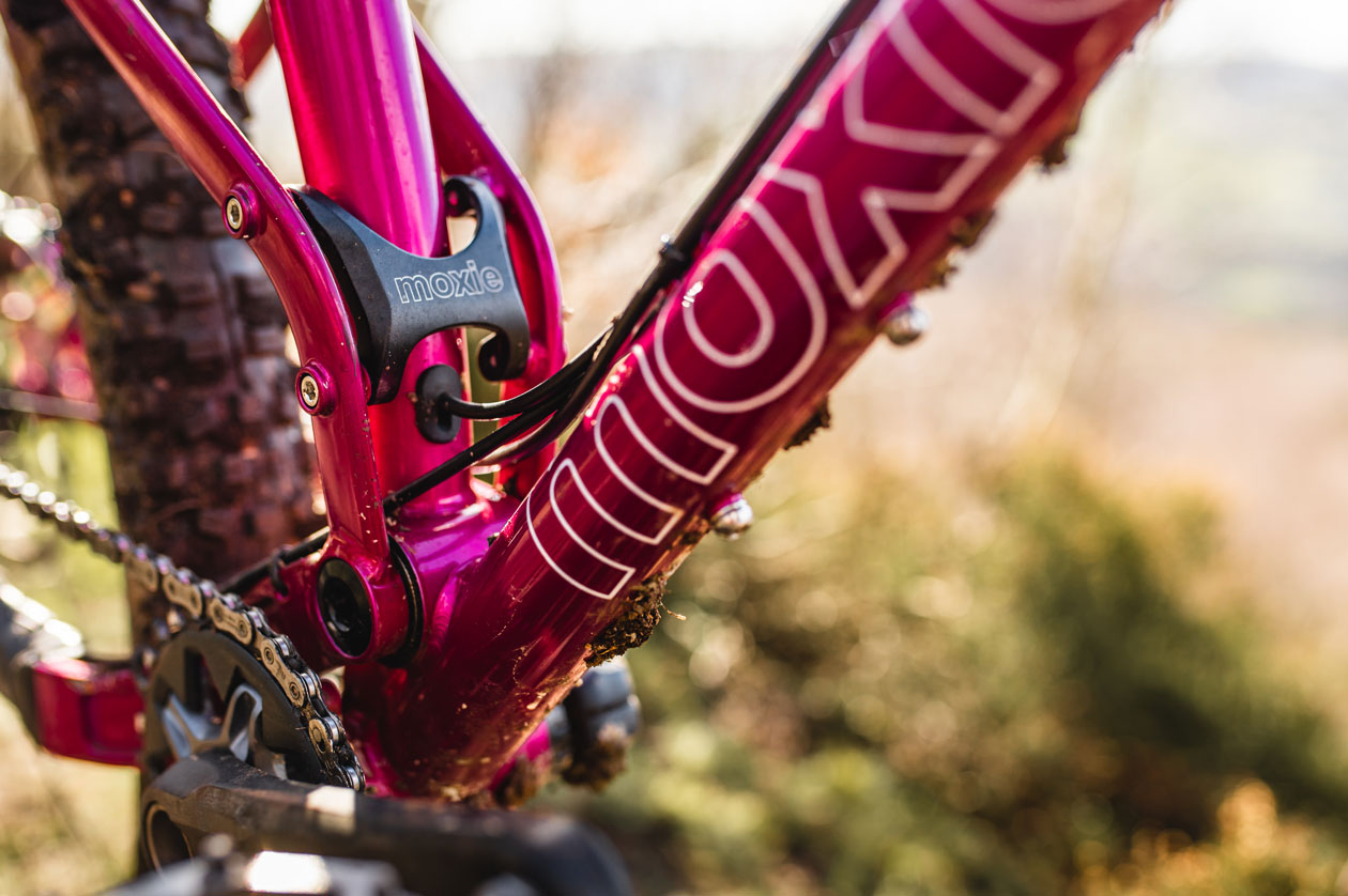 Pipedream Cycles - The Full Moxie