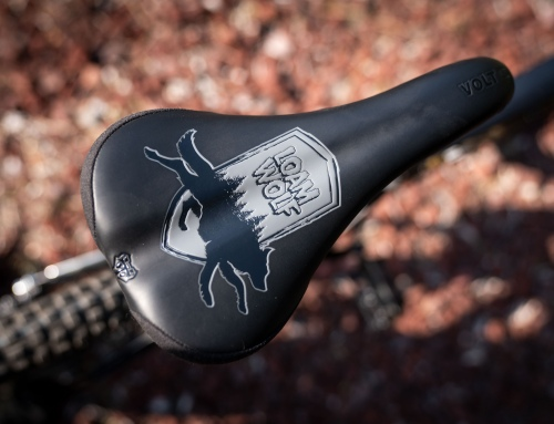 WTB+Loam Wolf Volt Saddle Collab