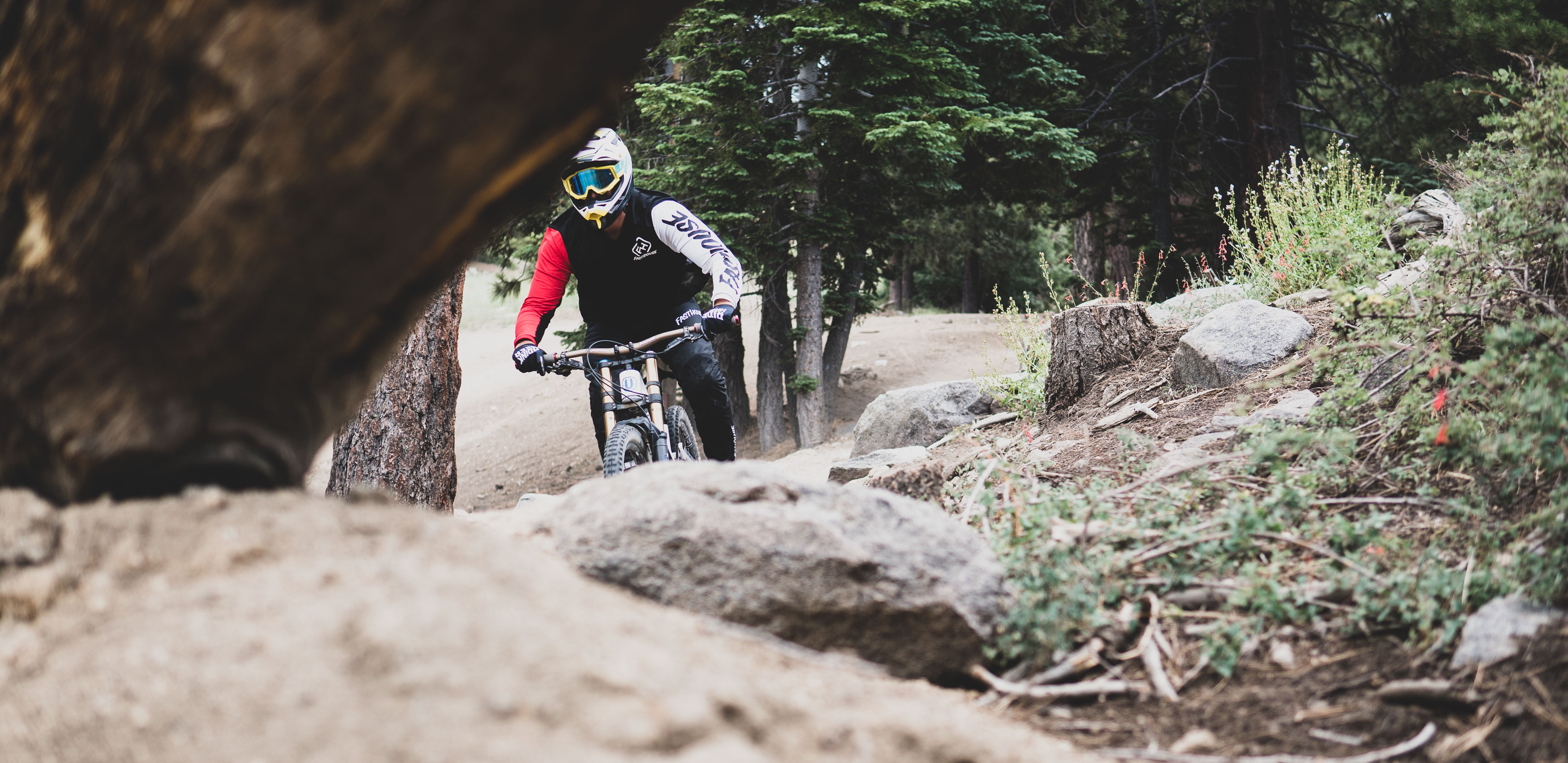 Fasthouse Fastline DH Gear