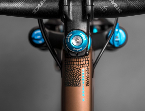 Santa Cruz Unveils the New Carbon Chameleon